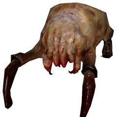 Modelo de Headcrab de Half-Life 2