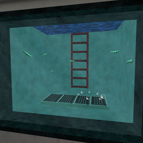 Sanguijuelas en un acuario en el Sector E