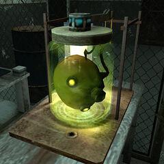 La cabeza del Cremador en el laboratorio