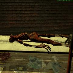 Cuerpo del Fast zombie