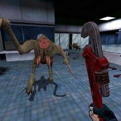 Primeros modelos atacando a Shephard