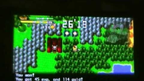 Half Minute Hero quest 4 in under 30 secs!!!!!!!!!!