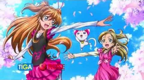 Fan Of Pretty Cure The Year 2014 (Special) - Pretty Cure 10th Anniversary (The Champion)