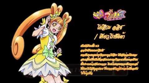Fan Of Pretty Cure The Year 2016 (2)