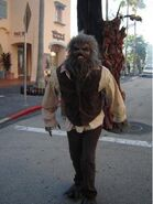 The Wolfman HHN 20YoF