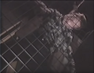 Hanged Man 1991