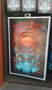 HHN 27 Skull Poster