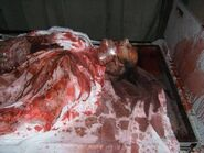 Screamhouse 3 Corpse 3