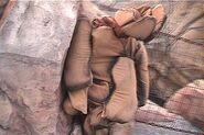 HHN 2004 Lost Continent Scareactor 3