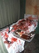 Screamhouse 3 Room 35