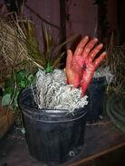 Screamhouse 3 Hand Plant