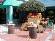 HHN 2001 Pumpkins