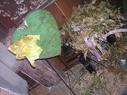 Screamhouse 3 Dead Plants