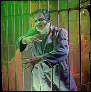 HHN VI Frankenstein