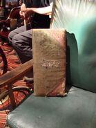 Wheelchair Pillow