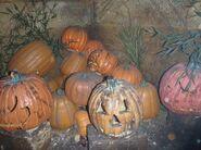 Hallow Pumpkins