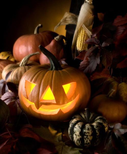 Halloween | Halloween Series Wiki | FANDOM powered by Wikia