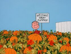 Linus in the pumpkin patch