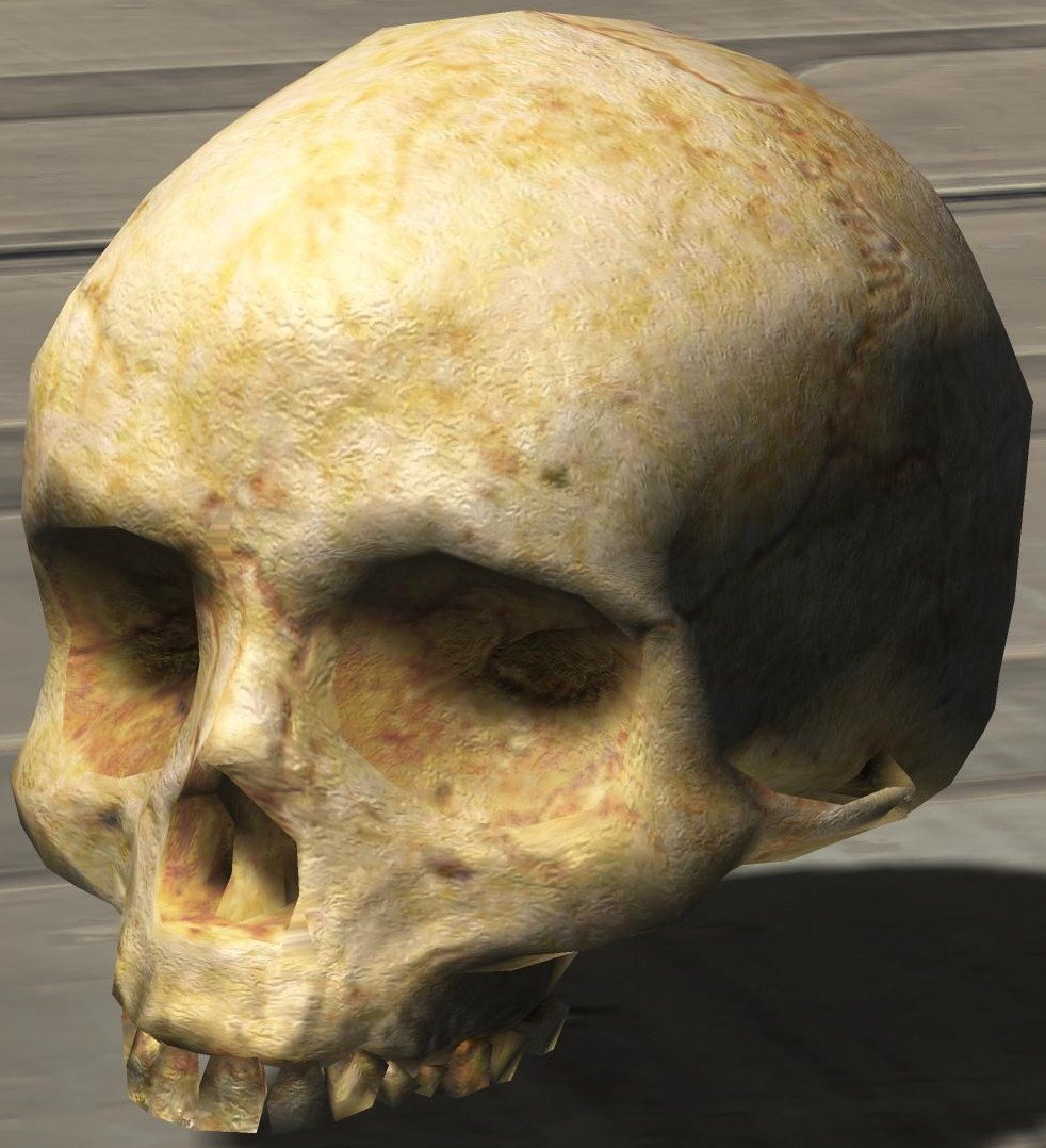 Halo 3 skulls