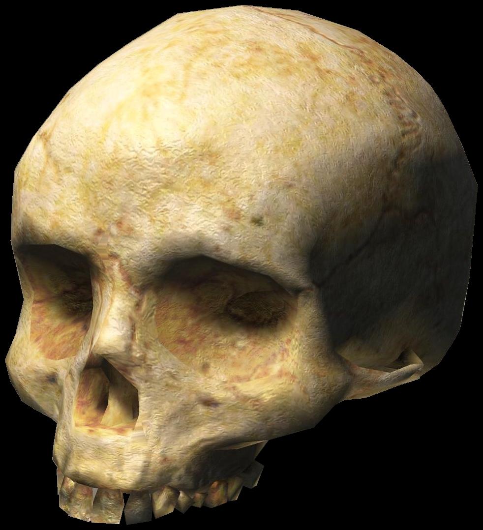 Cráneos de Halo 3 | Halopedia | FANDOM powered by Wikia