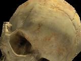 Cráneos de Halo 2