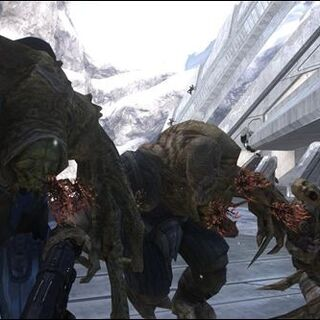forme da combattimento di diverse specie, in Halo 3.