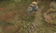 HW Forma Bombardera Vainas de Infección