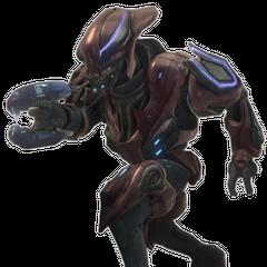 Zelota di Halo: Reach