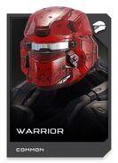H5G REQ card Casque-Warrior