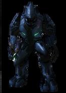 Elite Minor