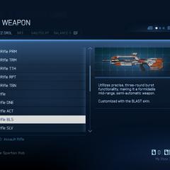 Das Kampfgewehr mit Blast (BLS) Skin