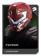 H5G REQ card Fenrir-Casque
