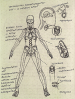 Spartan Bio 2