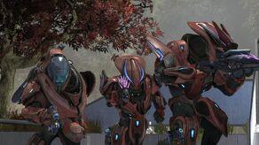 Red team elites