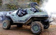 3727-450x-warthog