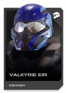 H5G REQ card Casque-Valkyrie EIR