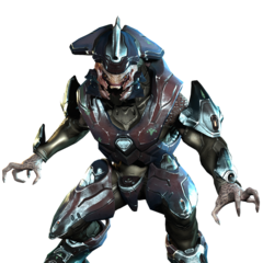 Un Elite Comandante in Halo 4