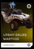 Urbangausswarthog