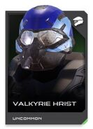 H5G REQ card Valkyrie Hrist-Casque