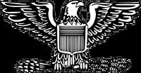 Colonel insignia
