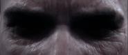 Eyes John-117
