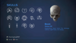 HCEA Boom Skull