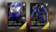 Tarjetas REQ Ghosts of Meridian H5G-21