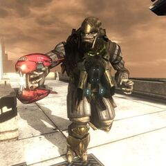 Un Brute Jump Pack Capitano in Halo 3: ODST