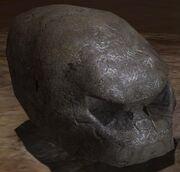 Cráneo Brute
