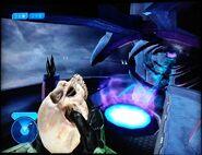 Cráneo 02 H2