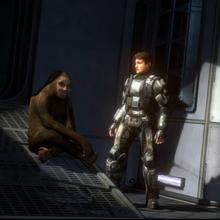 Mono oculto Ultima cinematica