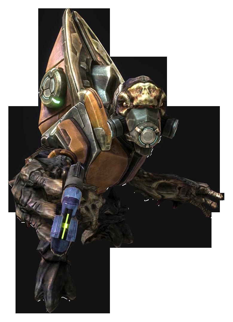 Unggoy Combat Harness Halo Alpha Fandom