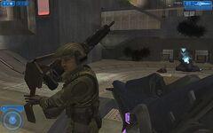 Halo 2 Vista M247