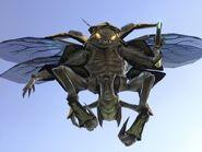Drone-1936463527